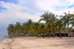 Bohol Beach Club - Bohol